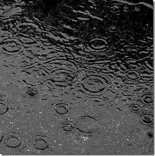 rainy soil - cropped